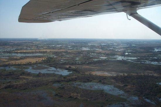 Sedia Riverside Hotel: Flight over the delta