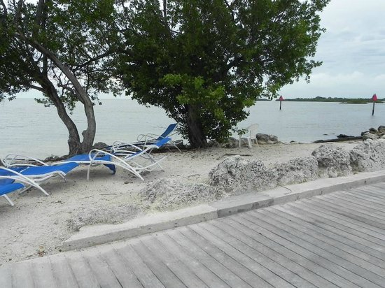Marathon Key Beach Club : Beach - needs updating