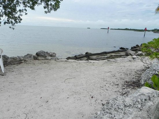 Marathon Key Beach Club : Beach needs updating