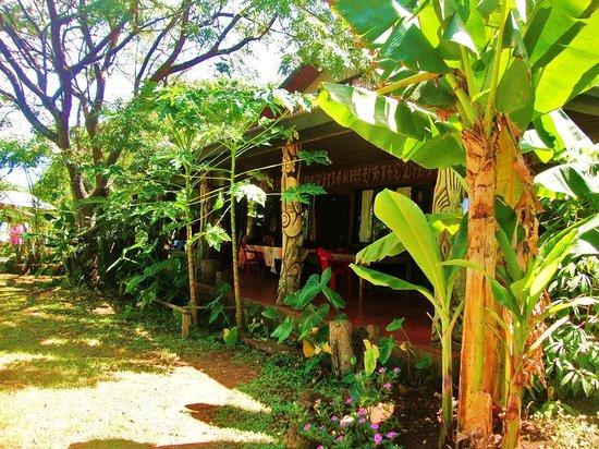 Cabañas Koro Nui