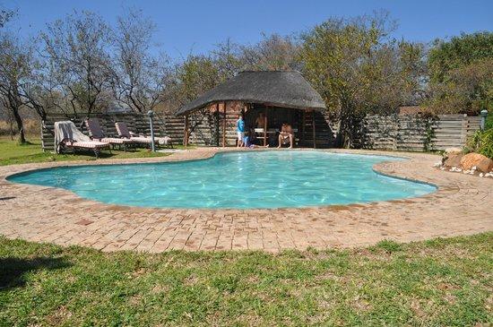 Mohlabetsi Safari Lodge: Piscine