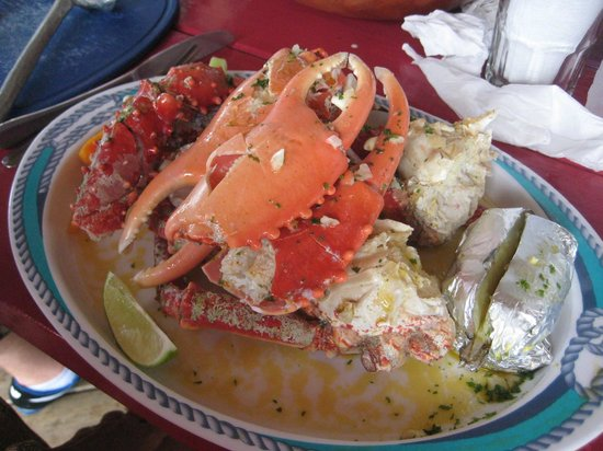 Gio's Restaurant : The crab is wonderful!