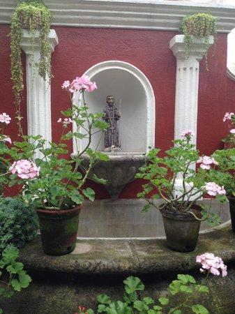 La Villa Serena: garden