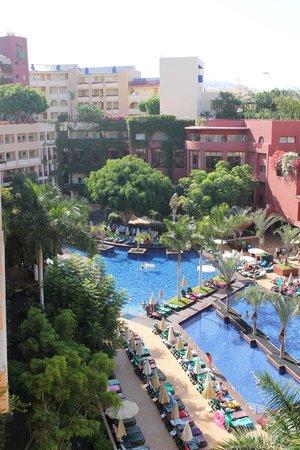 Best Jacaranda : vue piscine