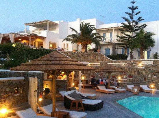 Vencia Hotel: Area piscina