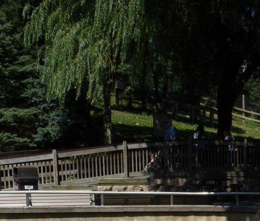 ZooAmerica North American Wildlife Park : ZooAmerica Shady paths & benches