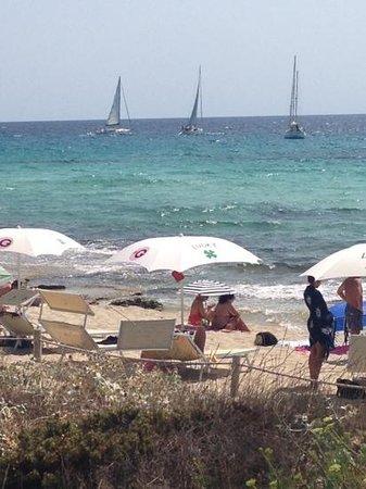 Playa de Migjorn: lucky
