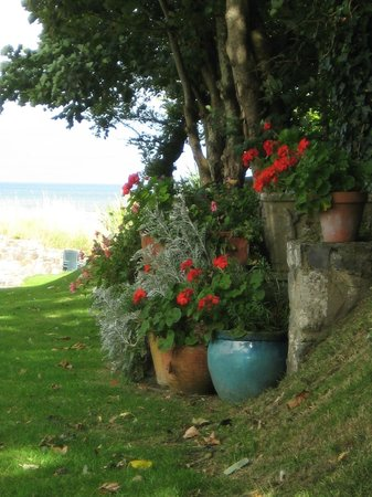 The Cottages : Gardens