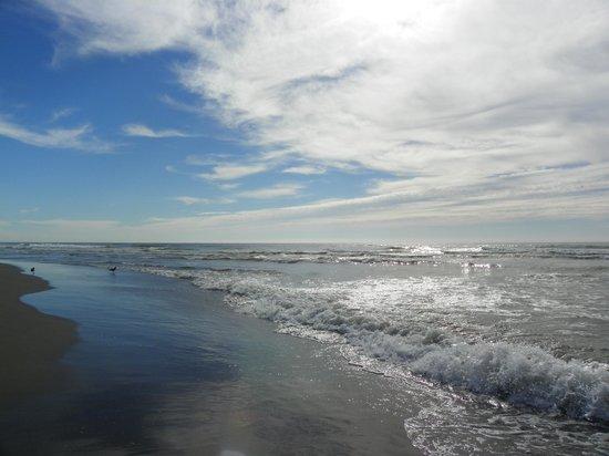 Lighthouse Oceanfront Resort: The Beach