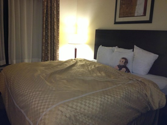 Comfort Suites Clayton: King Bed