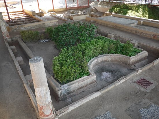 Casa del Mitreo: Jardin