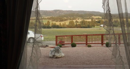 Sawin' Logs: The view out my window