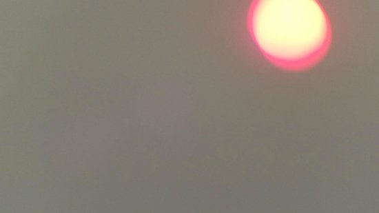 Sawin' Logs: Due to the fires in California, Arizona, Idaho, & other states the sun was totally red.