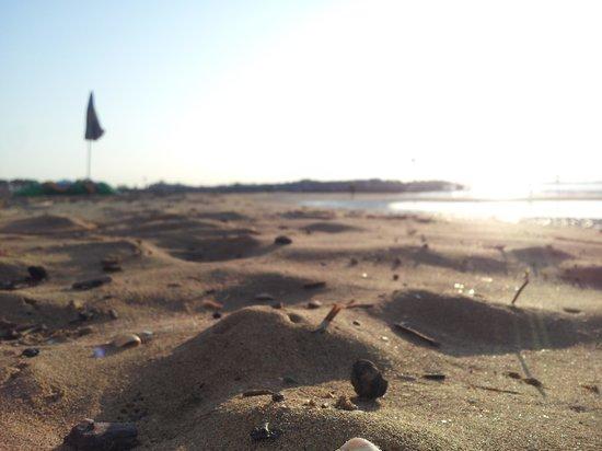 Camping Waikiki: spiaggia