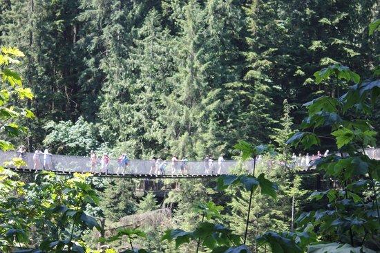 North Vancouver, Canada: Vista da Capilano