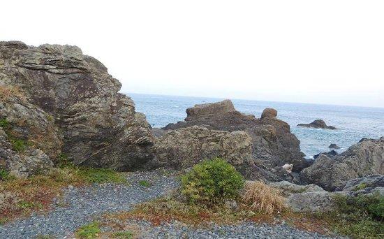 Cape Muroto: 海の近くまで行けます