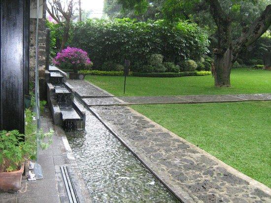 Casa Fernanda Hotel Boutique: Vista parcial del jardin...
