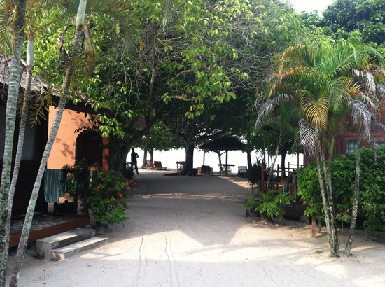 Grand Beach Motel: Huts on the beach