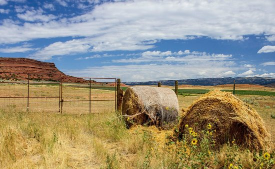 Red Reflet Ranch: Around the ranch