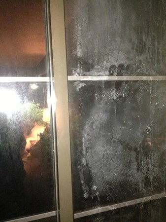 DoubleTree by Hilton Austin - University Area: filthy window - couldn't see out of it night or day