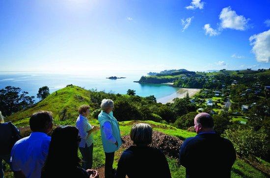 Fullers Waiheke Explorer Tour