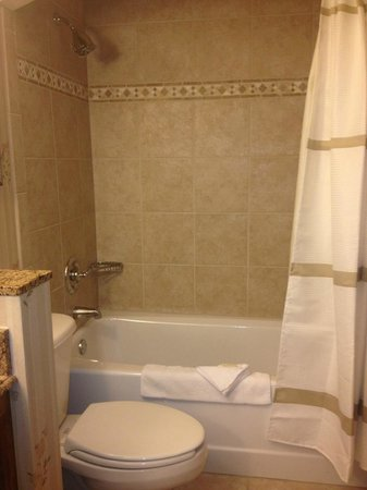 Vail Marriott Mountain Resort: tub, shower combination, room 377