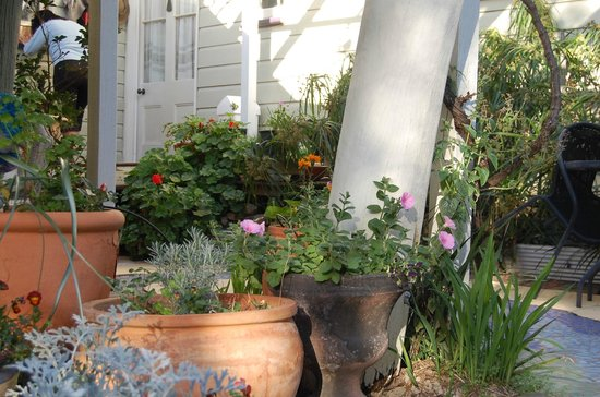 The Old Church Bed & Breakfast: Cottage gardens