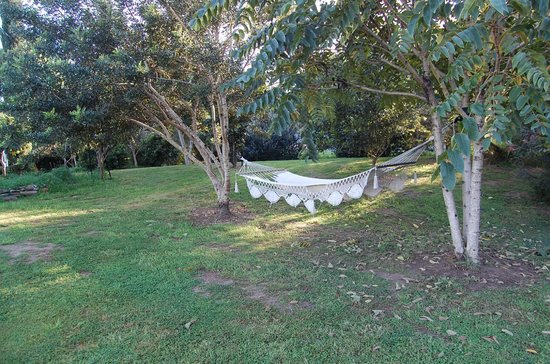 The Old Church Bed & Breakfast: Relaxing in the hammock in the garden