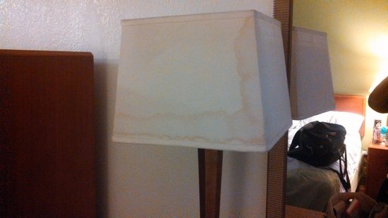 Motel 6 Buffalo Airport: Everything clean, but the lamp shades!! Eww!