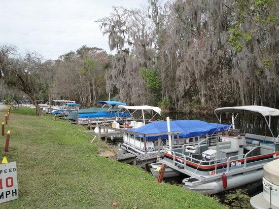 Holiday Travel Resort: the marina