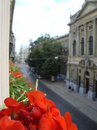 Swiss Hotel: Вид из окна номера