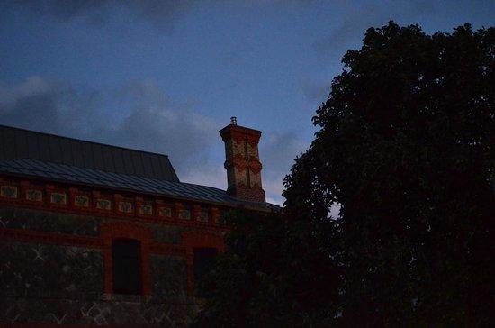 Villa Clementina Hotel: chimenea