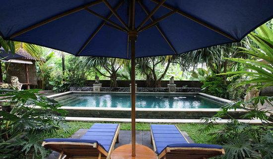 La villa Kishi-Kishi : Pool side
