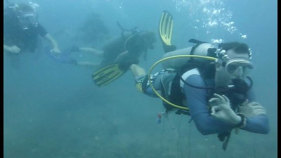 Rainbow Fish Divers: Stefan führt an