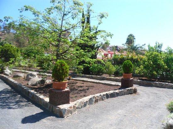 El Parque Botánico de Maspalomas: Botanical Gardens