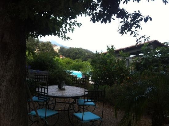 La Maison d'hotes : petit table au bord de la piscine