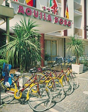 Hotel Aquila D'Oro: entrata hotel
