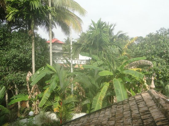 Bella Homestay: View of allepy from gallery