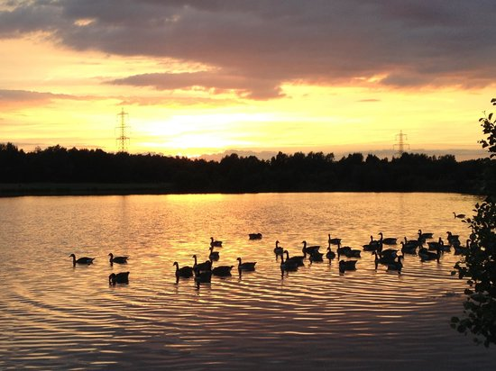 Image result for rother valley