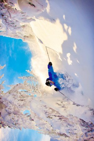 Big White Ski Resort: Blake going through the trees near the Cliff Chair