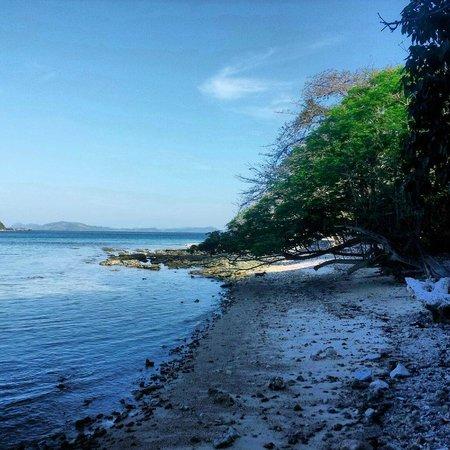 Mangenguey Island : ...