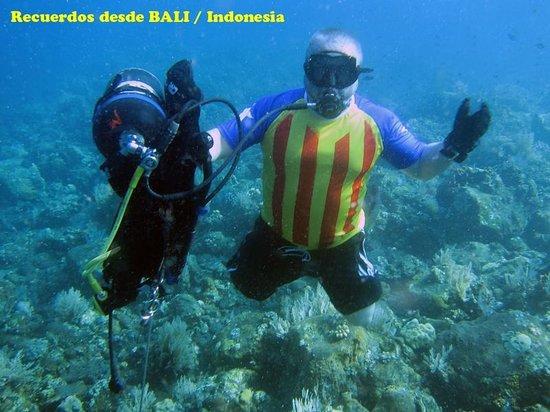 Matahari Tulamben Resort, Dive & SPA: Disfrutando de los fondos