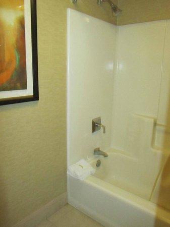Ameristar Casino Hotel Vicksburg: Bagno
