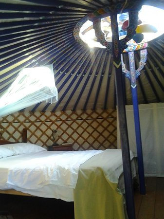 Agriturismo Fattoria La Prugnola: Interno Yurta