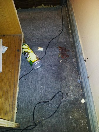 Motel Hollywood: The Mess behind an Endtable and what I thought looked like Beef Jerky.