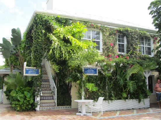 The Caribbean Court Boutique Hotel: Hotel