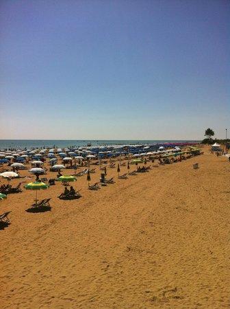Camping Village Pino Mare: La spiaggia