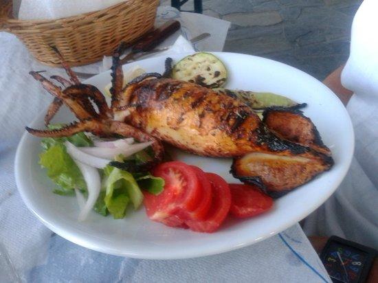 Taverna Tasos: Grilled squid