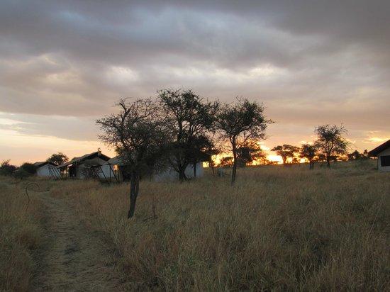 Nieleze Serengeti Camp: Sunset on Nieleze camp