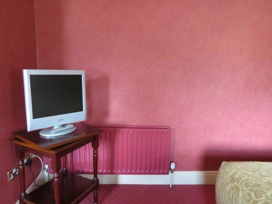 Arbutus Hotel: TV